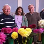 Blooming marvellous!  Darlaston Town Hall Allotments Show