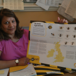 Action Plan to save UK bees